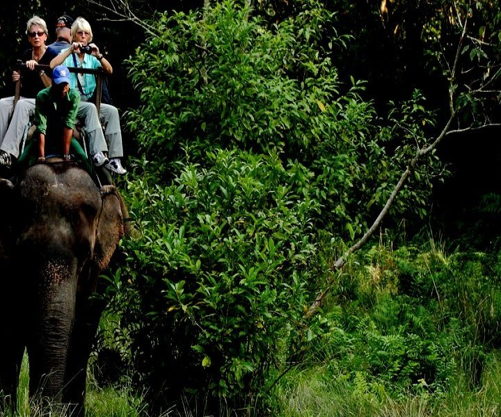 Best Chitwan Luxury Tour